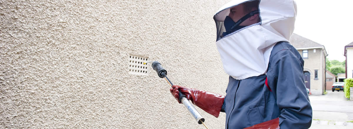 Why You Should Consider Hiring Pest Controllers Watford?