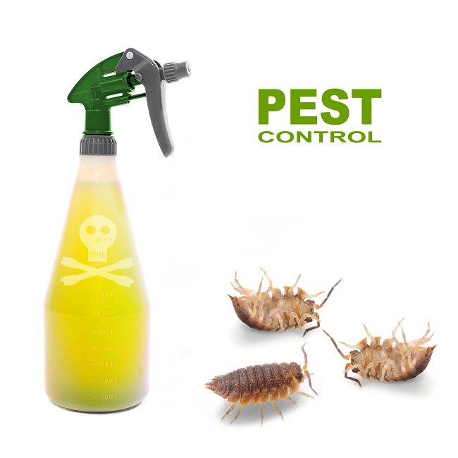 Diseases Caused by Pests and Guidance For Hiring Control Agencies For Pests