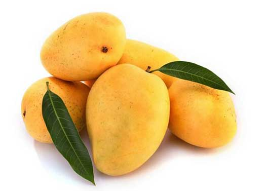 Mango: India's Favourite Fruit