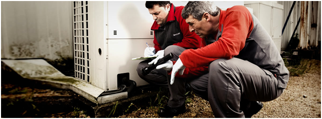 What Makes Pest Controllers Watford The Most Preferred Choice?