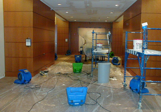 Professional Water Removal Services In Florida