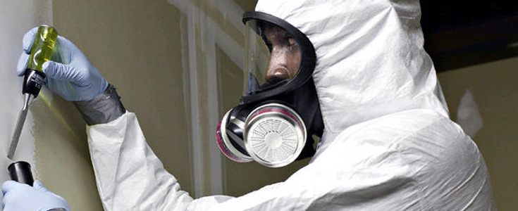 Finding Asbestos Survey Management Provider Can Be Helpful For Your Property