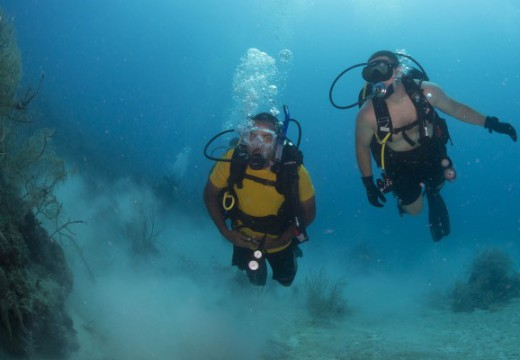 How To Become A Scuba Dive Instructor