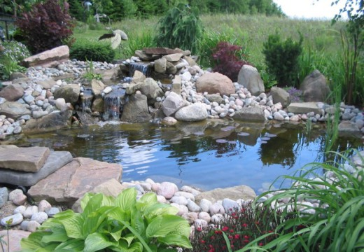 Pond Vacuum: – Keep Your Ponds Manageable, Hygienic and Beautiful