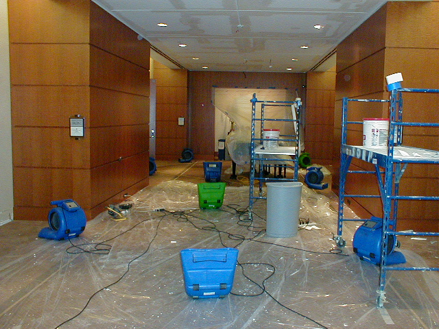 All About Water Damage and Restoration: You Need To Know