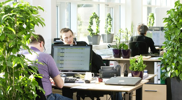 Turn Your Office Into A Sustainable Powerhouse In 5 Steps