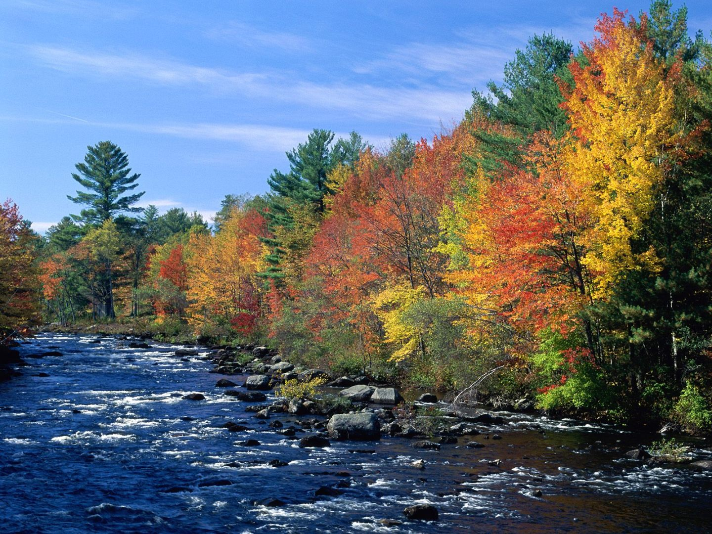 Canvas Print Of Nature's Beauty In The Fall