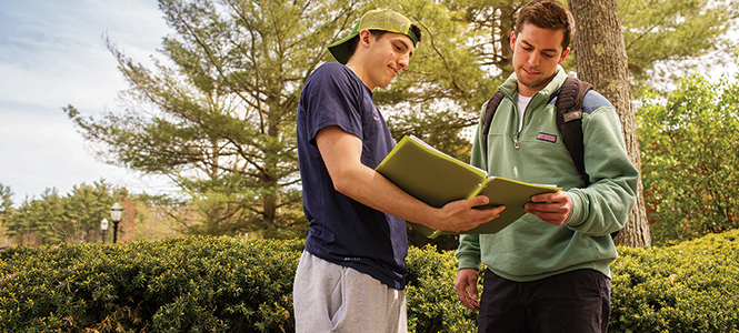 What Are College Placement Exams?