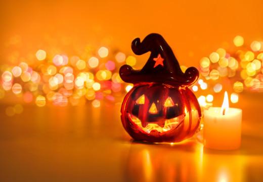 Creepy Pests On Halloween
