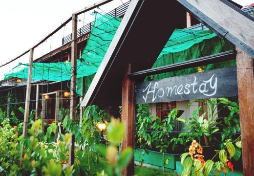 Why vacationing at a homestay is a good option?